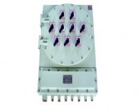 BXD(M)60系列防爆照明(动力)配电箱(IIC)