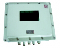 BDXY81系列防爆显示器仪表箱(IIB IIC)