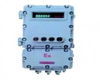 BDXY82系列防爆智能(称重)显示器仪表箱(IIB IIC)