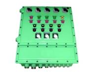 BXM(D)38系列防爆照明(动力)配电箱(IIB)